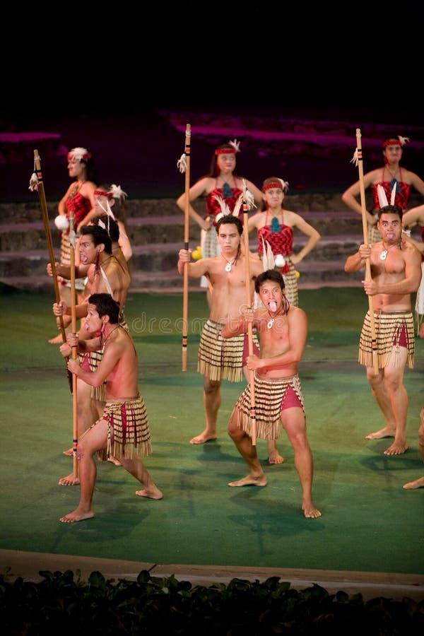 2337 haka maoryjski obrazy royalty free