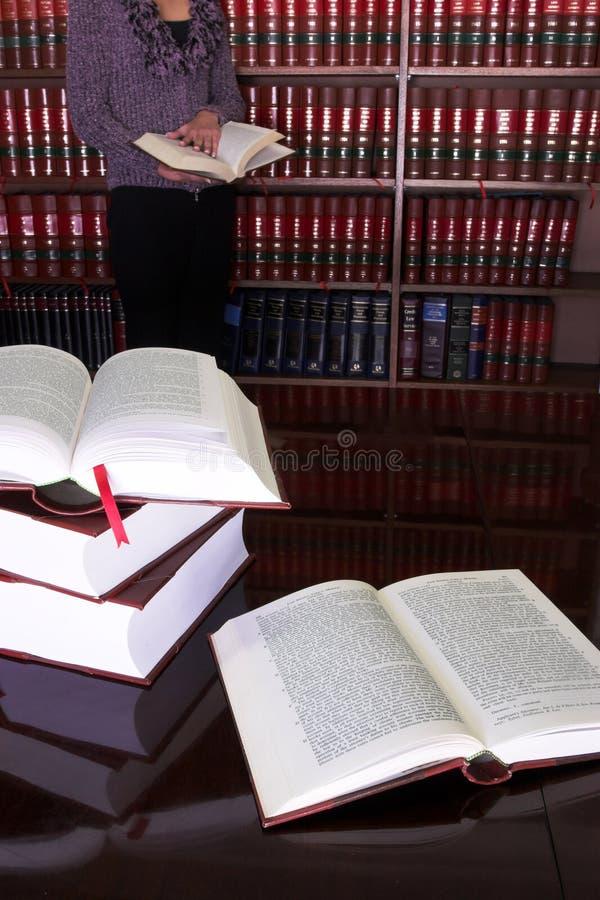 24 lagliga böcker royaltyfri foto