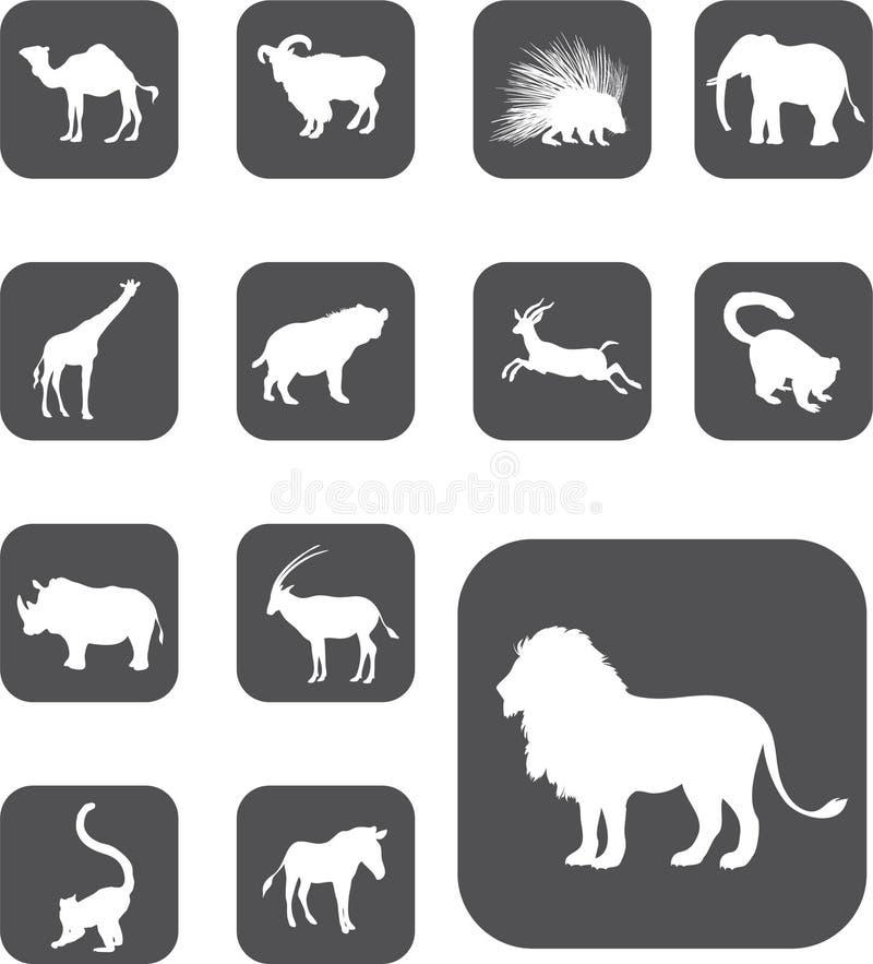 25 кнопок животных установили z