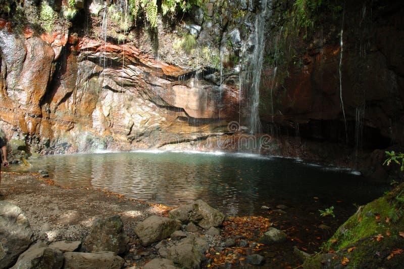 25 fontens Мадейра rabacal стоковая фотография