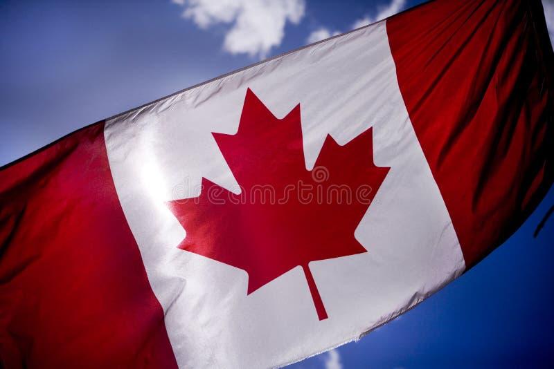 253 flaga kanady szargający zdjęcia stock
