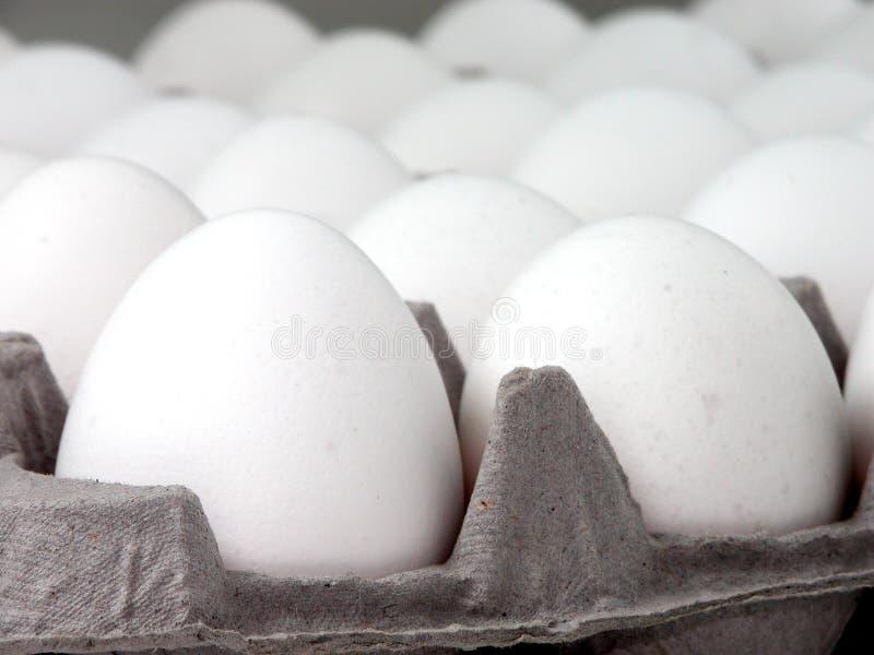 接近的蛋食物 免版税库存照片