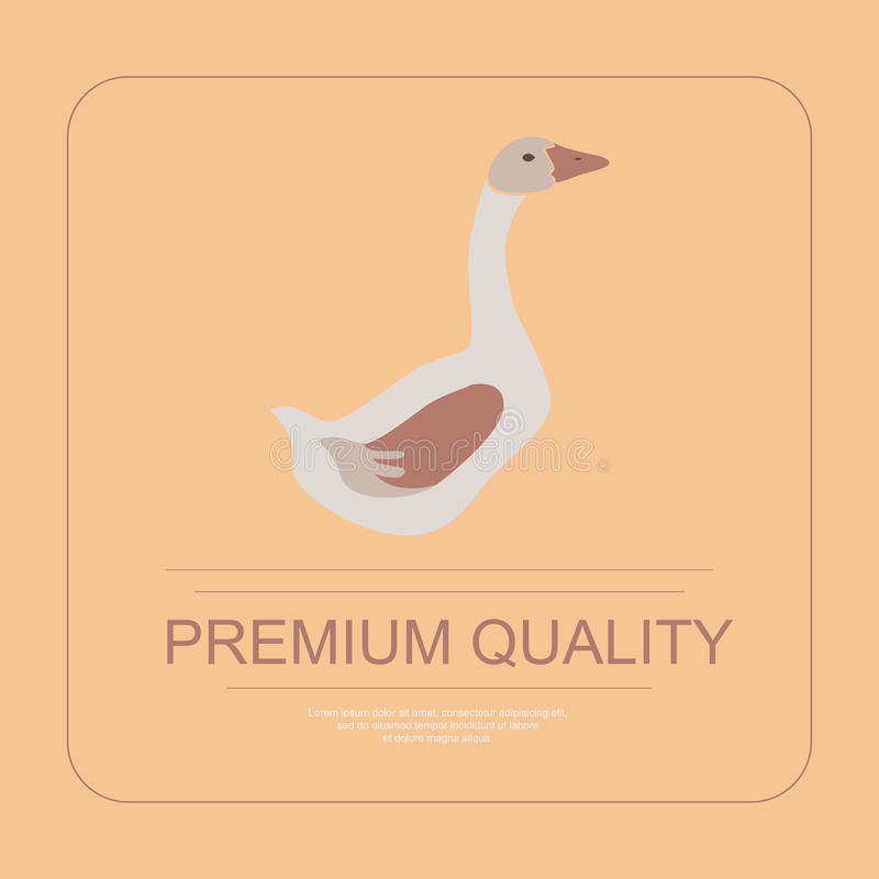 Free 259 Logotype Of Premium Quality Royalty Free Stock Photos - 70794018