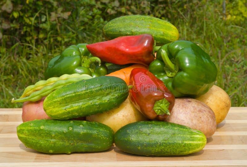 26 овощей стоковое изображение rf