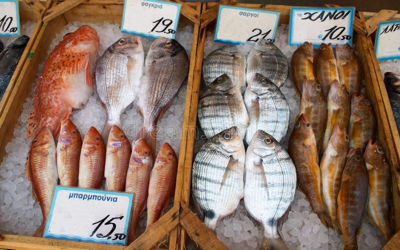 显示鱼贩子s 免版税库存照片