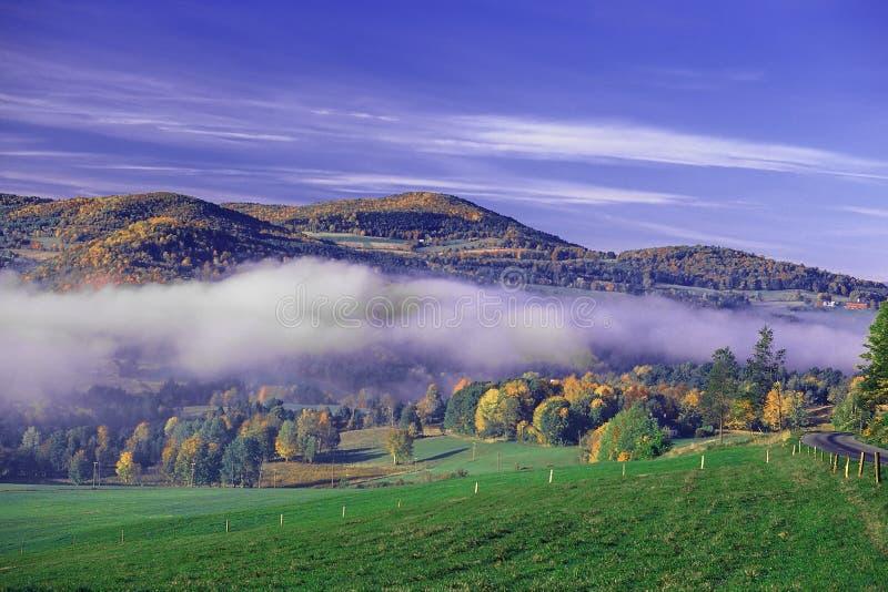 有雾的谷 图库摄影