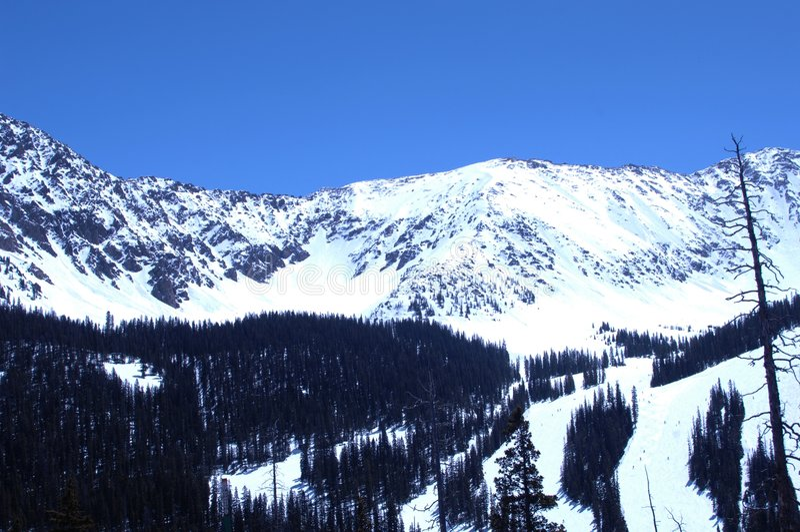 278 górskiej śnieżni obraz royalty free