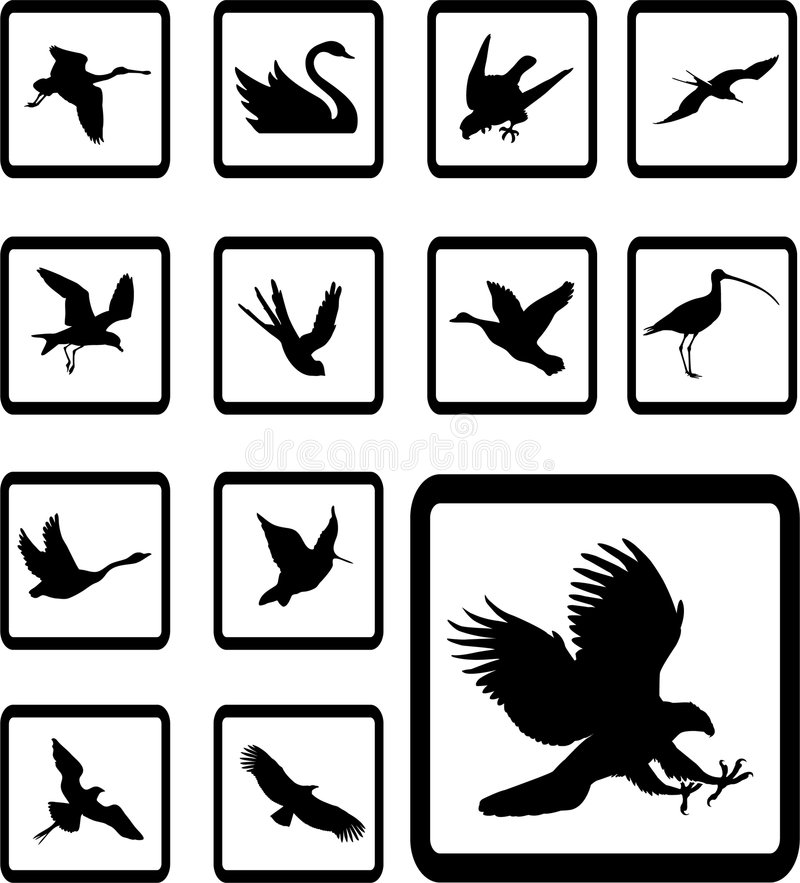27b ustawiać ptak ikony ilustracja wektor