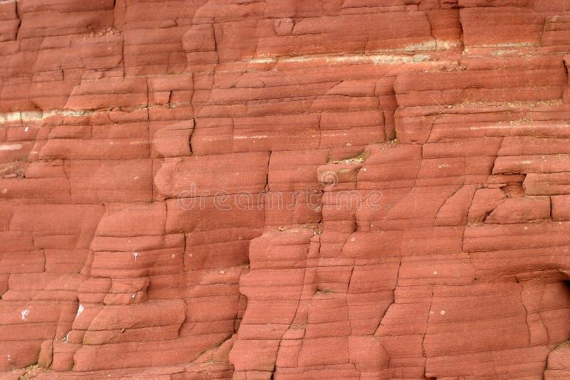 海滩峭壁表面 库存照片