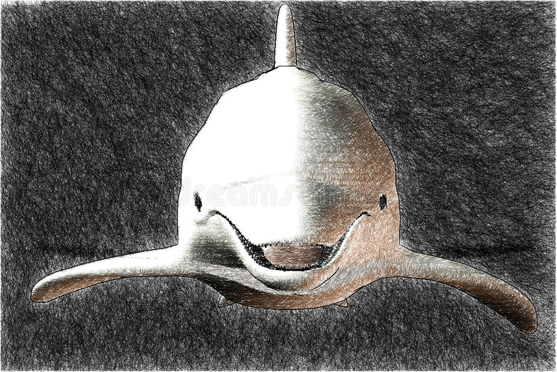 海豚草图 库存例证