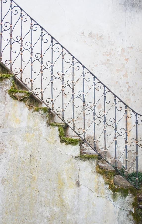 生苔楼梯 免版税库存照片