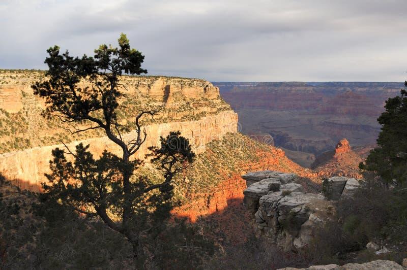 3个峡谷全部视图 库存照片