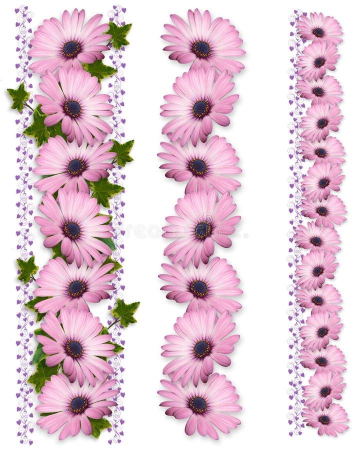 3个边界雏菊紫色样式 库存照片