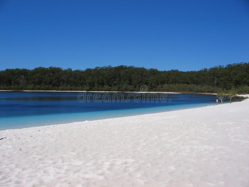 3澳洲湖mckenzie 库存图片