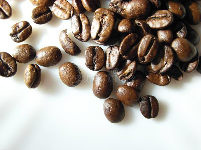 3粒自然背景豆的无奶咖啡 库存图片