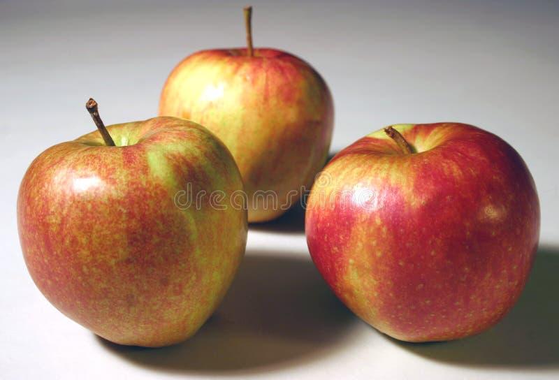 3 äpplen fotografering för bildbyråer