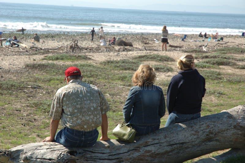 3 άνθρωποι σκιαγραφούν surfers στοκ φωτογραφία