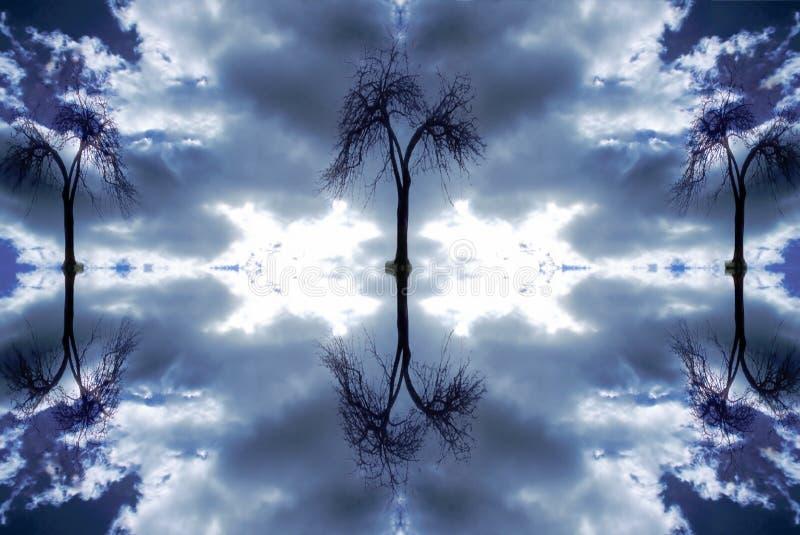 3 δέντρα στοκ εικόνες