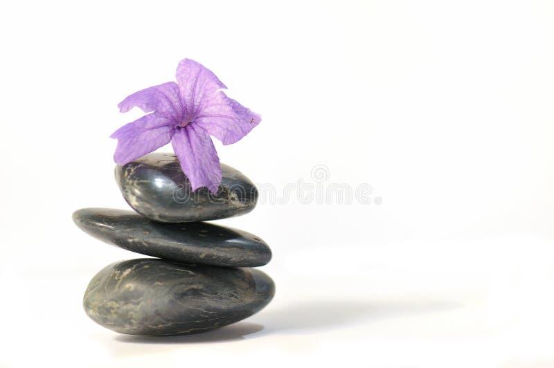 3 σειρές zen στοκ εικόνα