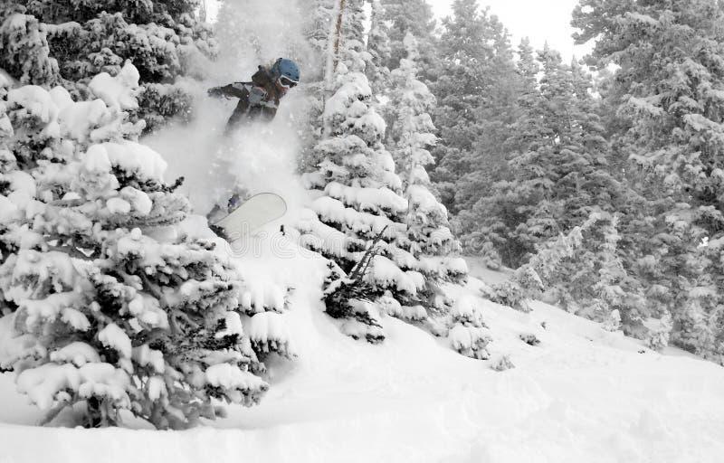 3 χτυπήματα οικότροφων ενέργειας πηδούν τις γυναίκες χιονιού στοκ εικόνα