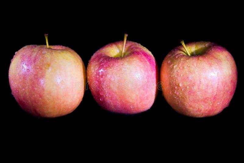 3 яблока на черной предпосылке стоковые фотографии rf