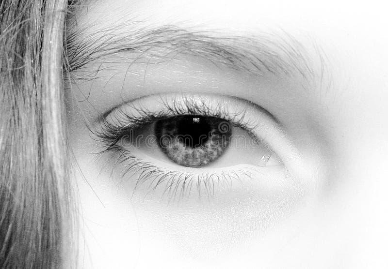 3个特写镜头眼睛 免版税库存图片