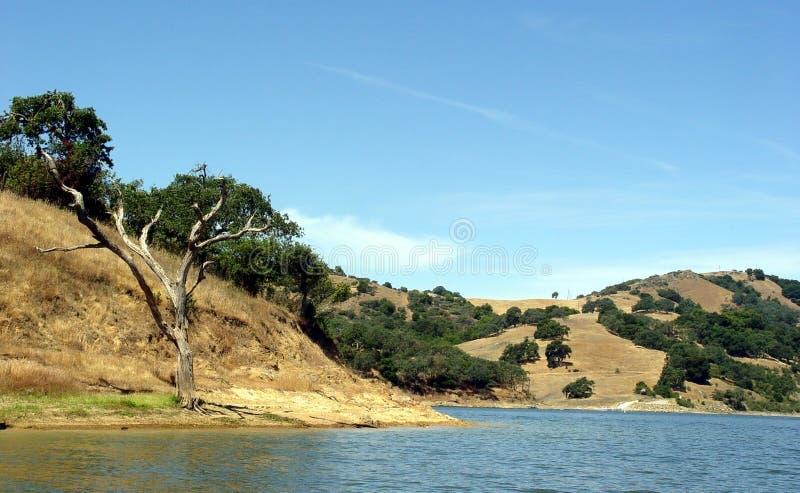 3加利福尼亚小山 免版税库存照片