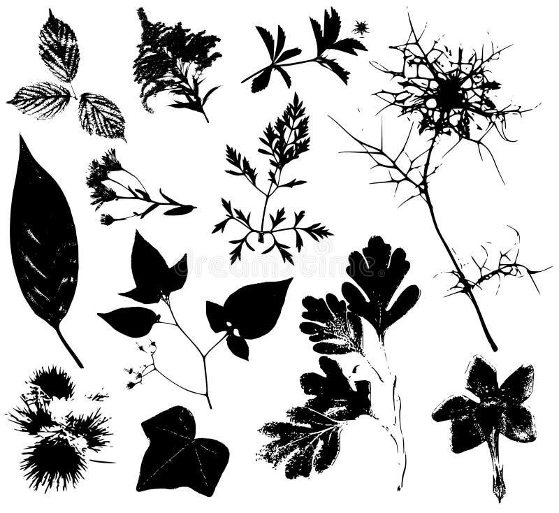 3 blommar leavesvektorer royaltyfri illustrationer