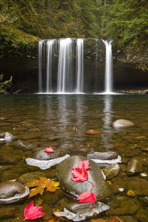 3 butte zatoczki spadek Oregon wierzch obrazy royalty free