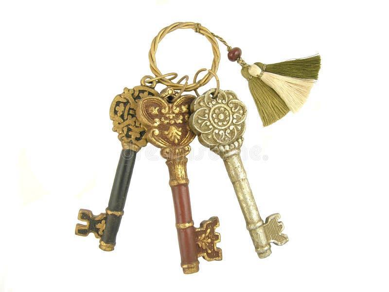 3 chaves de esqueleto fotografia de stock