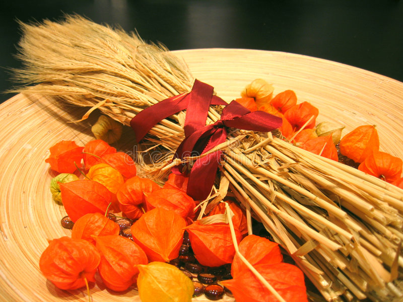 Download 3 dekoracja jesienią zdjęcie stock. Obraz złożonej z zboża - 28616