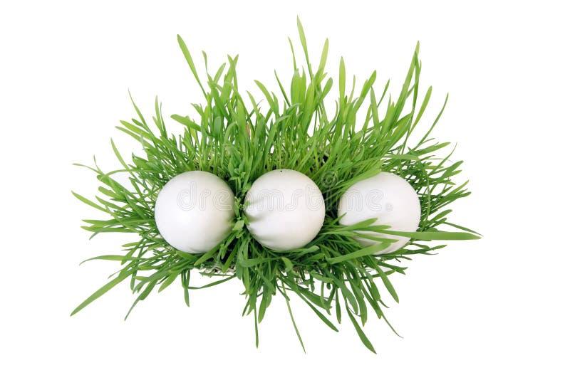3 Eier im Gras. Oberseite. lizenzfreie stockfotos