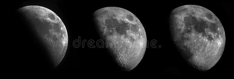 3 fasen van de toenemende maan stock foto