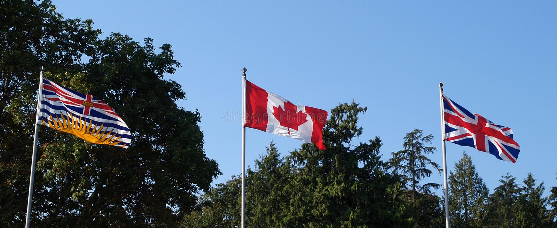 3 flagę obrazy royalty free