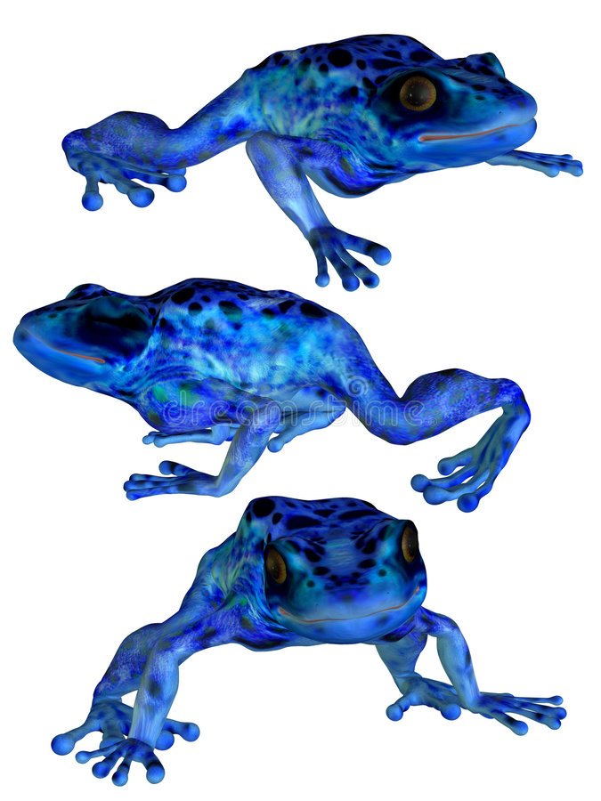 The 3 Frogs royalty free illustration