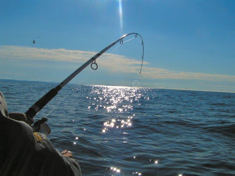 3 głębokie rybołówstwa morza zdjęcie stock