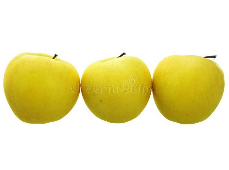 3 gelbe Äpfel lizenzfreie stockfotografie