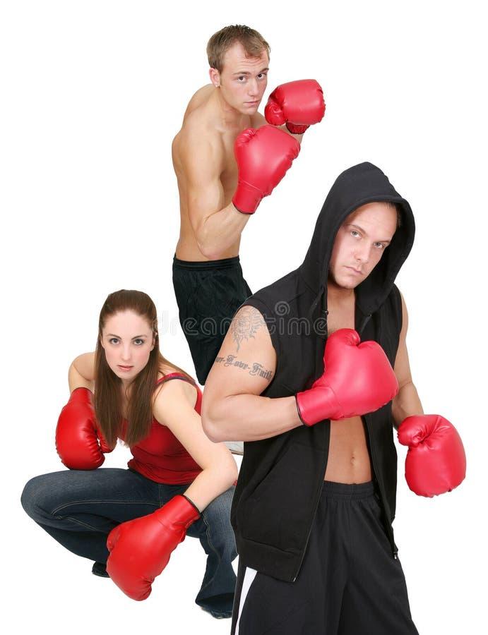 3 gens de boxe image libre de droits