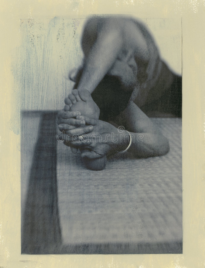 3 jogi natury zdjęcie royalty free