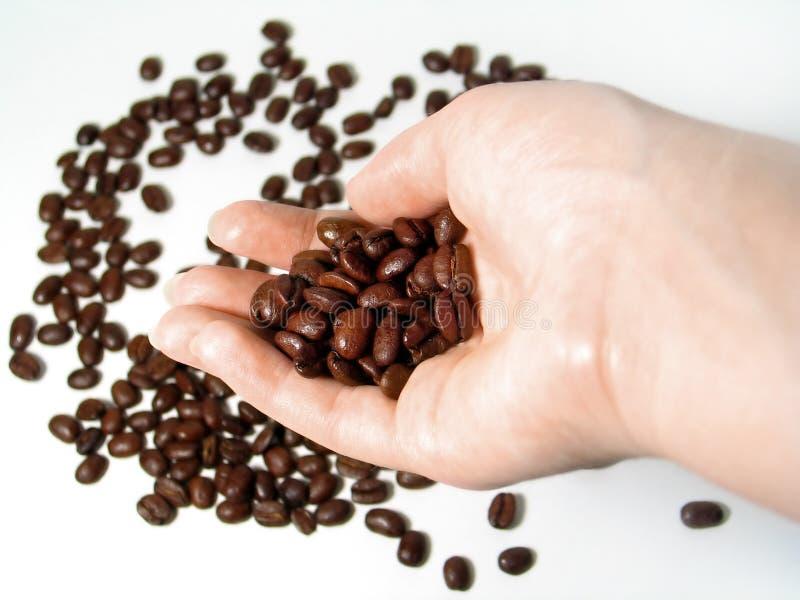 3 kaffeserie arkivbild