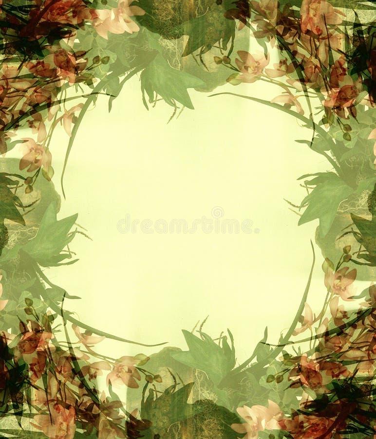 3 kwiaty abstrakcjonistycznych ramowego zdjęcie ilustracja wektor