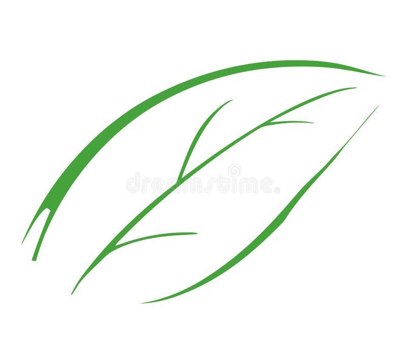 3 liści, ilustracji