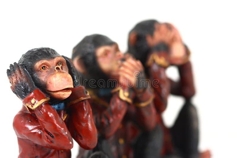 3 małpy. fotografia stock
