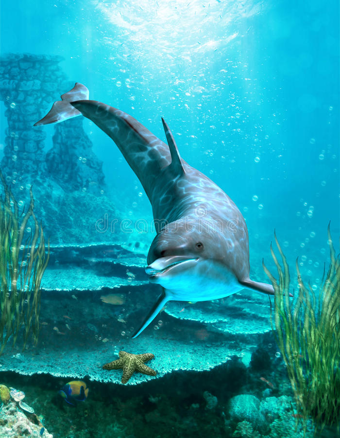 3 oceanworld ilustracji