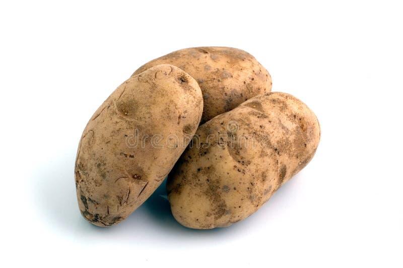 3 patate fotografia stock