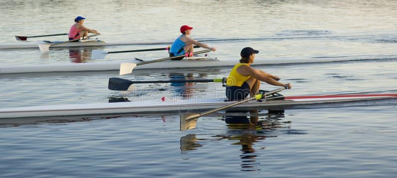 3 Rowers photos libres de droits