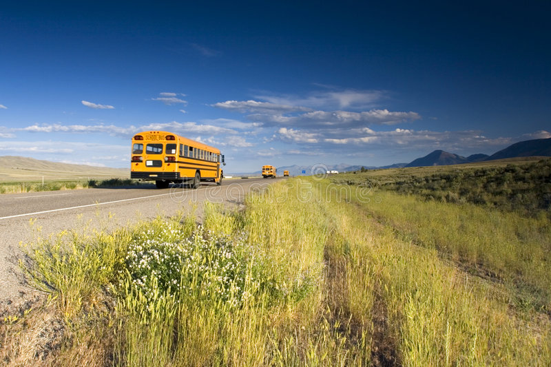 3 School buses on the road stock images