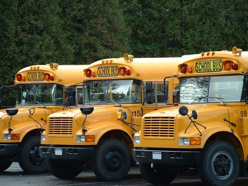 3 Schulbusse lizenzfreie stockfotos