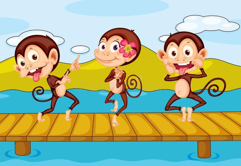 3 scimmie illustrazione vettoriale
