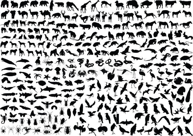 300个动物剪影 库存例证